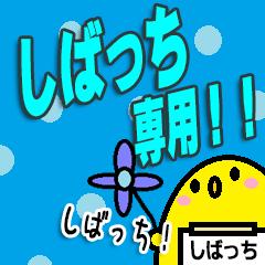 しばっち専用!!(あだ名)