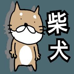 【柴犬TV】デカ文字