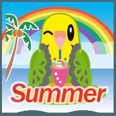 梅雨&夏に使える〜セキセイインコ