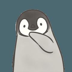 毒舌コウテイペンギン