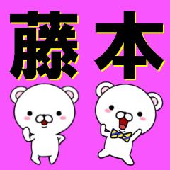 超★藤本(ふじもと・フジモト)なクマ
