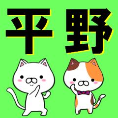 超★平野(ひらの・ヒラノ)なネコ