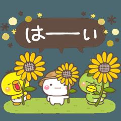 大人の親切で丁寧な言葉【夏】
