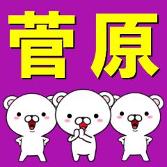 超★菅原(すがわら・すがはら)なクマ