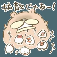 チャウチャウ犬の茶太郎 5