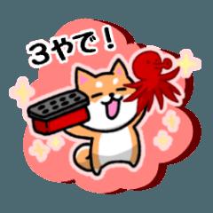 大阪弁の柴犬さん3