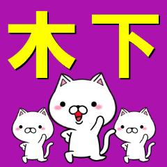 超★木下(きのした・キノシタ)なネコ