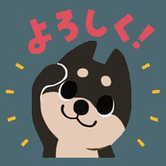 [LINEスタンプ] BARON BUDDIES 22 柴犬 (1)