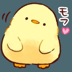 [LINEスタンプ] もふピヨ (1)