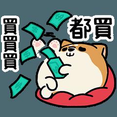 柴犬アワのネット生活