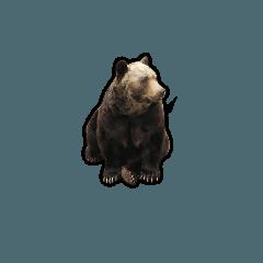 【出没注意】熊たちのスタンプ
