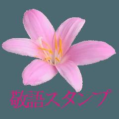 花畑スタンプ2