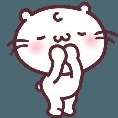 Move up!! Chubby Majimeow meow