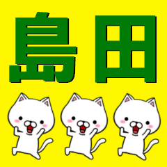 超★島田なネコ