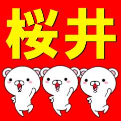 超★桜井(さくらい・サクライ)なクマ