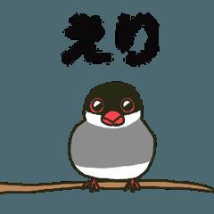 えりちゃんが送る文鳥スタンプ【タグ対応】