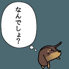 激しく尻尾をふるイヌ ~本音篇