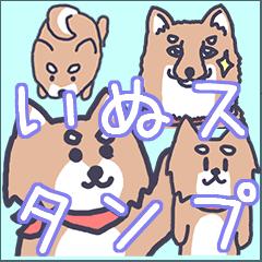 柴犬のこたろースタンプ!
