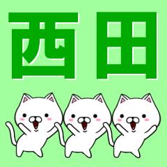 超★西田(にしだ・ニシダ)なネコ
