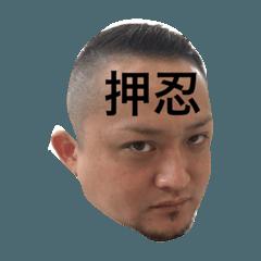 歌舞伎町のテツ君
