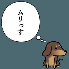 激しく尻尾をふるイヌ ~本音篇2