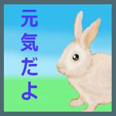 ウサギさんのスタンプ