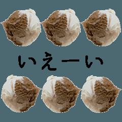 語るアイスクリーム02