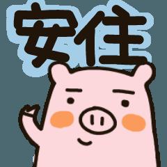 安住さん★専用スタンプ