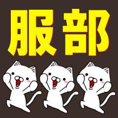超★服部(はっとり・ハットリ)なネコ