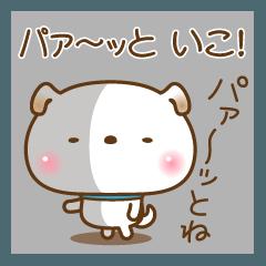 無表情なぽち吉の大切な毎日&無難【No.4】