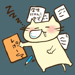 学生にゃんこ 関西編