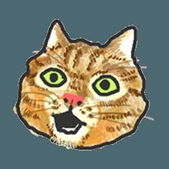 無言で訴える猫のスタンプ