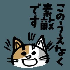 大和言葉猫