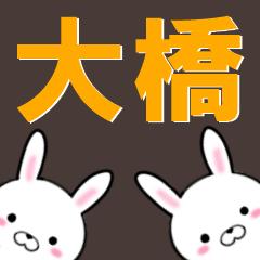 超★大橋(おおはし・オオハシ)なウサギ
