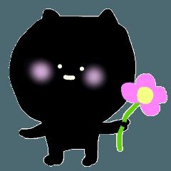 黒猫くーちゃんとみぃちゃん
