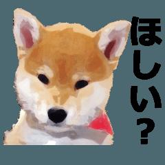 しゃべる柴犬(日常会話編2)