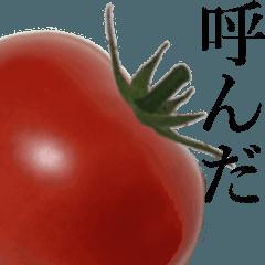 【動く】こんな、トマト どうでしょう?