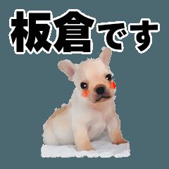 板倉さん用の名前スタンプ・子犬イラスト