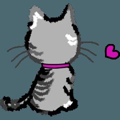 I am Maro.ver.2☆ LOVE☆かわいい猫