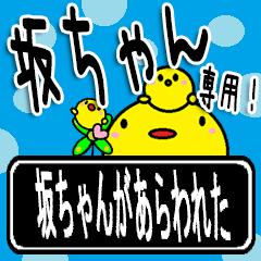 ★坂ちゃん★専用(デカ文字)