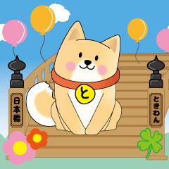 日本橋 おもてなし柴犬 ときわん