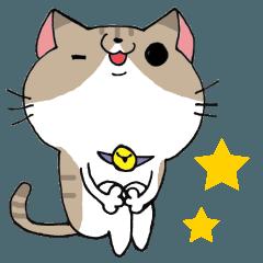 毎日使える猫の日常会話